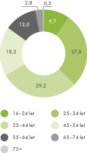 Využívání on-line bankovnictví podle věkové struktury, 2013 (v%)
