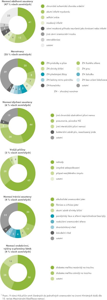 Struktura zemřelých podle příčin smrti*) vroce 2013 (v%)