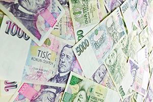 Zadluženost přijetí eura nebrání