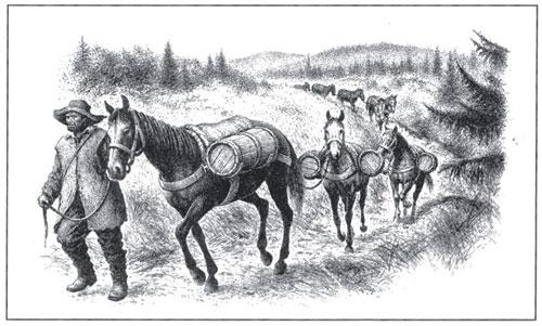 Přeprava soli přes Šumavu.