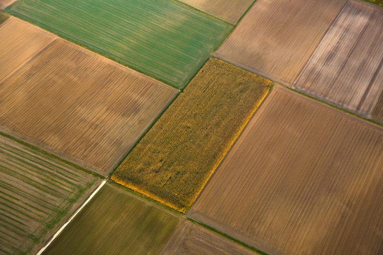 Jak se změnila zemědělská krajina