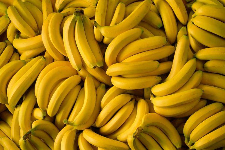 Největším pěstitelem banánů je Indie