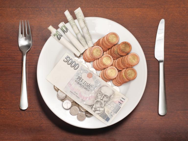 Potraviny se přetahují s bydlením o pozici nejvyššího výdaje domácností